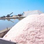 Соль морская природная крымская немолотая, мешок 25 кг, Самара
