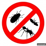 Уничтожение насекомых, Самара