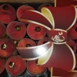 Продаем персик, Самара