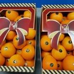 Продаем апельсины, Самара