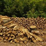 Дрова для каминов, бани, мангалов, печей, Самара