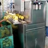 Машина для яблоко чистки и удаления сердцевины 400 кг/час, Самара