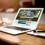 Создание сайтов в веб-студии, Самара