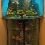 аквариум 385 литров б/у, Самара
