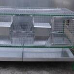 Любимая клетка для содержания кроликов, Самара
