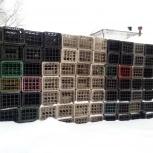 Ящики пластмассовые 20-ти местные под пивную бутылку б/у продаю, Самара