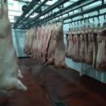 Убойный цех по переработке Скота, Самара