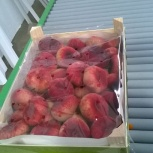 Продаем парагвайский персик, Самара