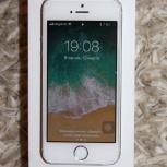 iPhone 5s, Самара