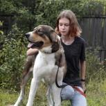 Фисташка собака, Самара