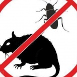 Уничтожение крыс и мышей, Самара