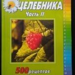 Справочник целебника. Часть 2. 500 рецептов, Самара