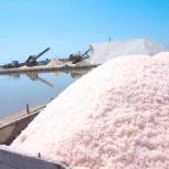 Соль морская розовая для пищевой промышленности, мешок 25 кг, Самара