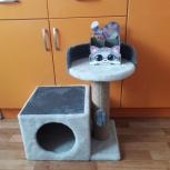 Домики-когтеточки для кошки, Самара