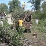 Расчистка участка., Самара