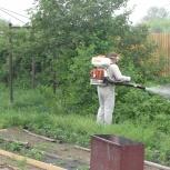 Уничтожение комаров на дачном участке. Обработка дачи от комаров, Самара